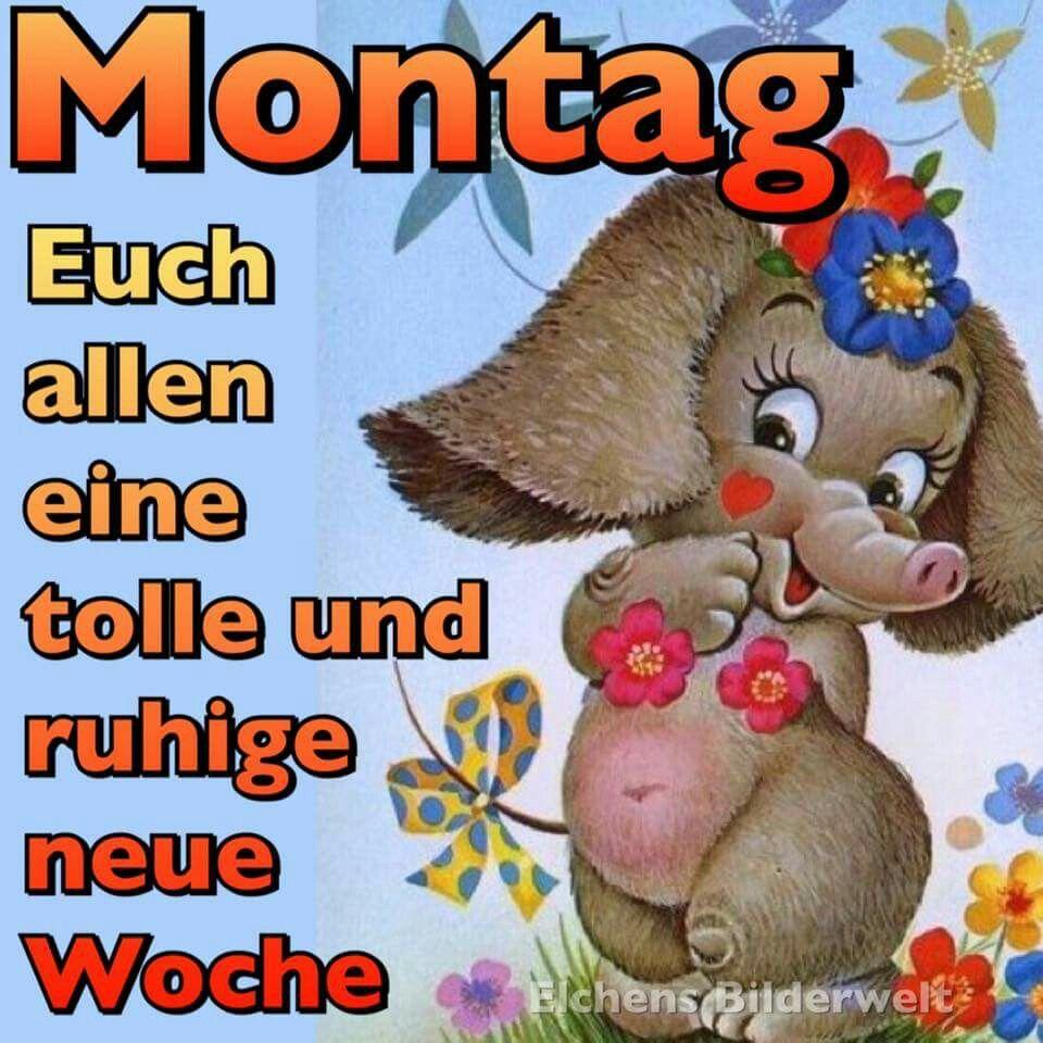 Pin Von Brigitte Husgen Auf Happy Montag Tagesspruch Guten Morgen Lustig