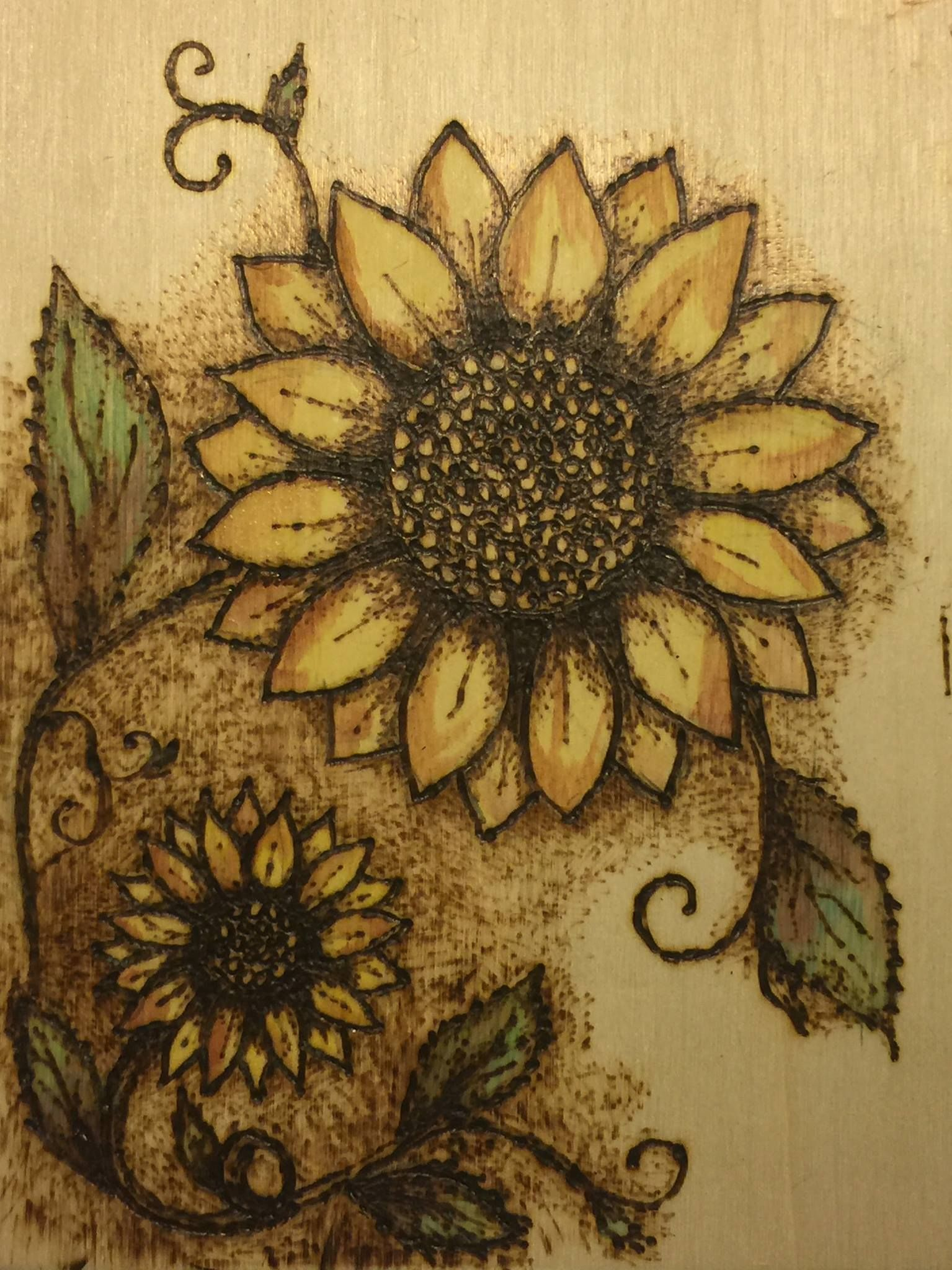 Wood Burning Watercolor Sunflowers