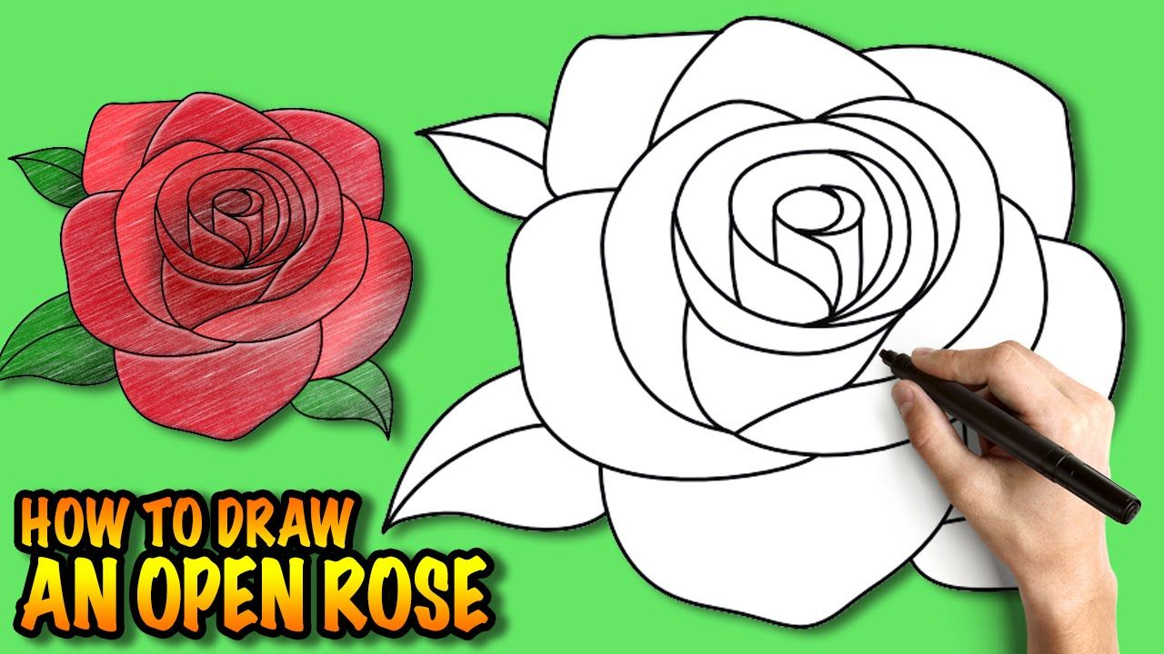 How To Draw An Open Rose Easy Stepbystep Drawing Tuturial