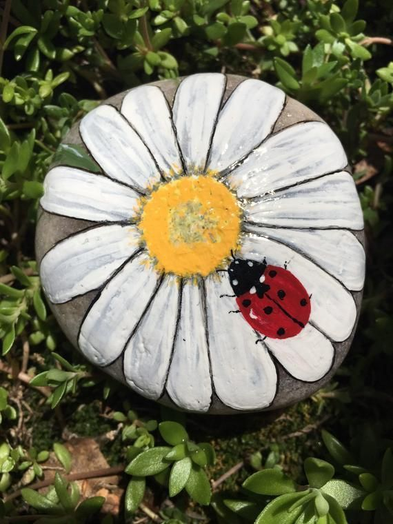 Photo of Hand painted daisy stone,  #Daisy #diyeasygardenideasfun #Hand #Painted #stone