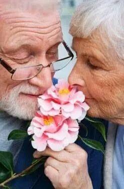 até as flores nos unem