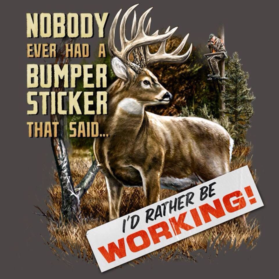Funny Hunting Quotes Especially During The Rut  You Kill It You Grill Ithunting