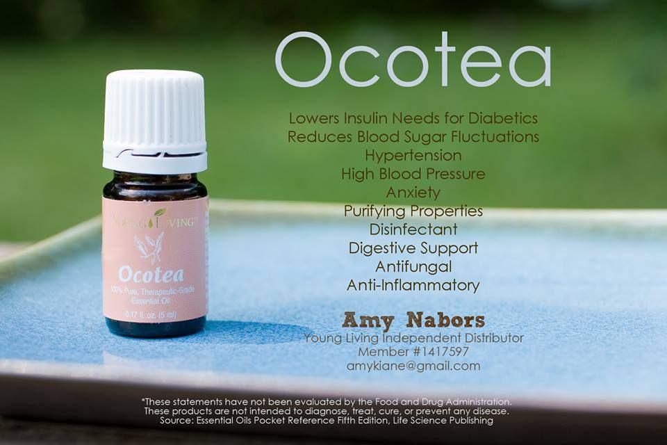aceite esencial de ocotea para la investigación de la diabetes