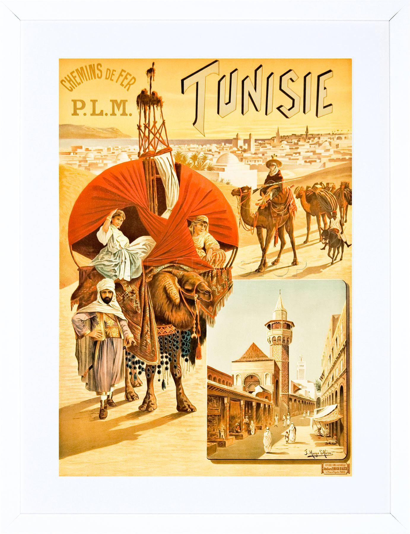 23 x 18 CM VINTAGE TRAVEL AFRICA TUNISIE RAIL CAMEL NEW FRAMED WALL ...