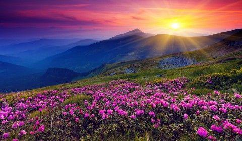 Rocky Mountain Sunset Wallpaper