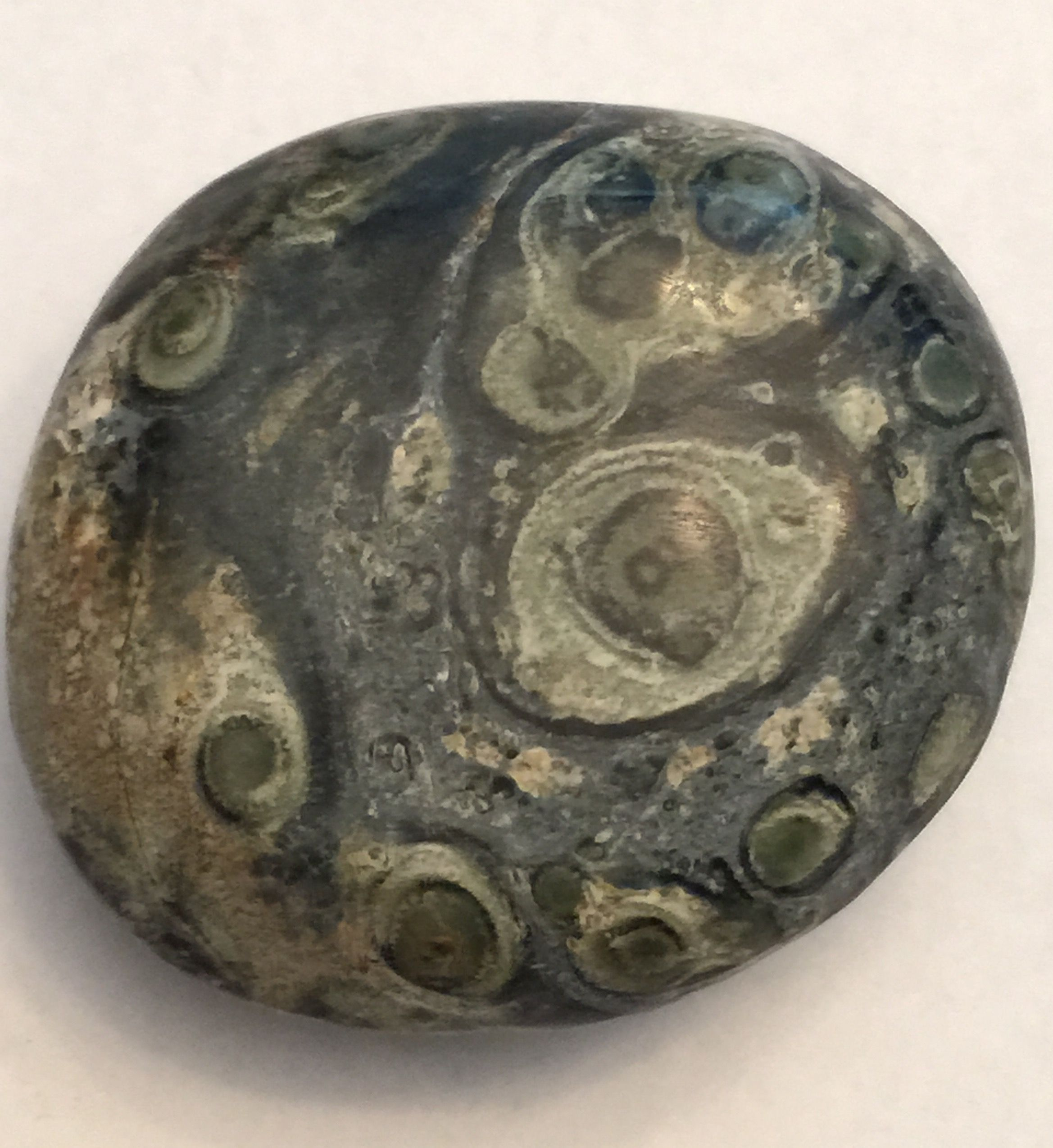 Stromatolite Fossil ~ Collection of Rebekah Myers Dunford