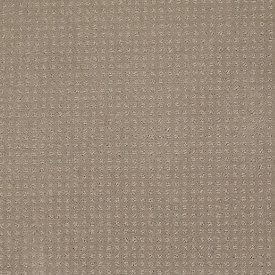 Color: 00104 Chameleon In Savannah - EA024 Shaw ANSO Nylon Carpet Georgia Carpet Industries
