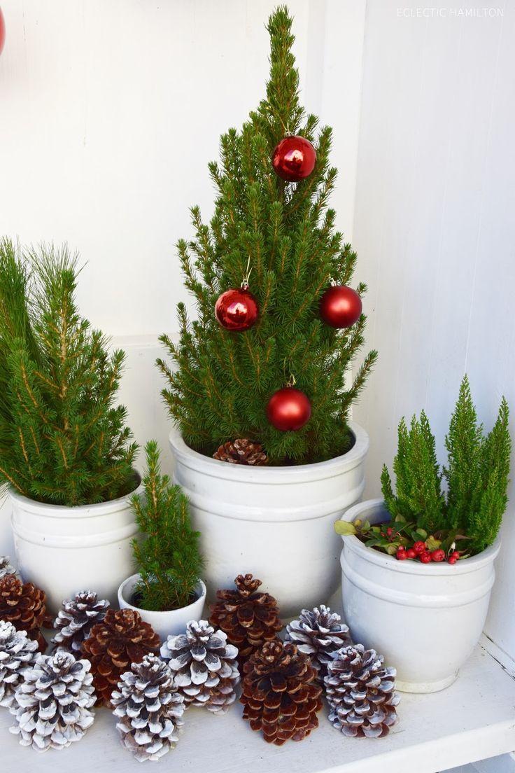 meine erste weihnachtsdeko und deko tipps f r euch deko mit naturmaterialien pinterest. Black Bedroom Furniture Sets. Home Design Ideas