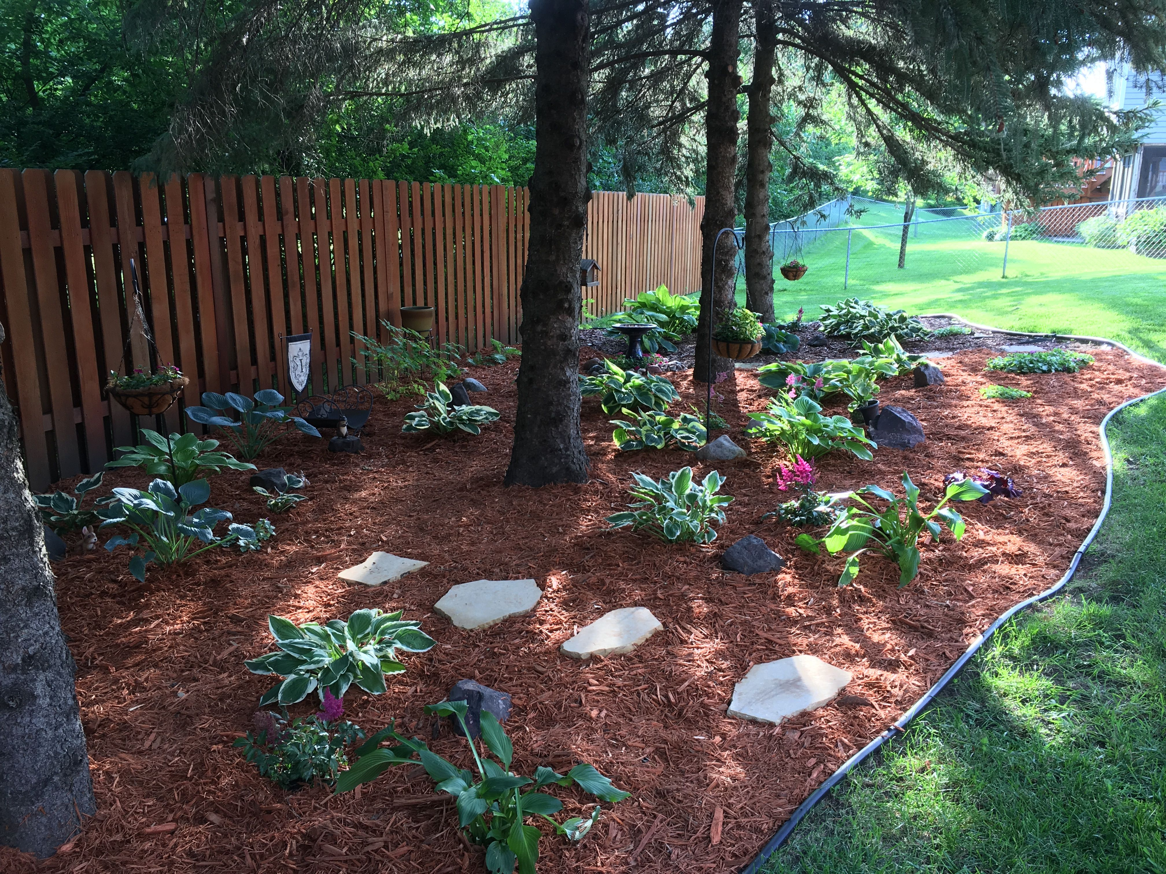 Landscape Perennial Ideas For Under Pine Trees