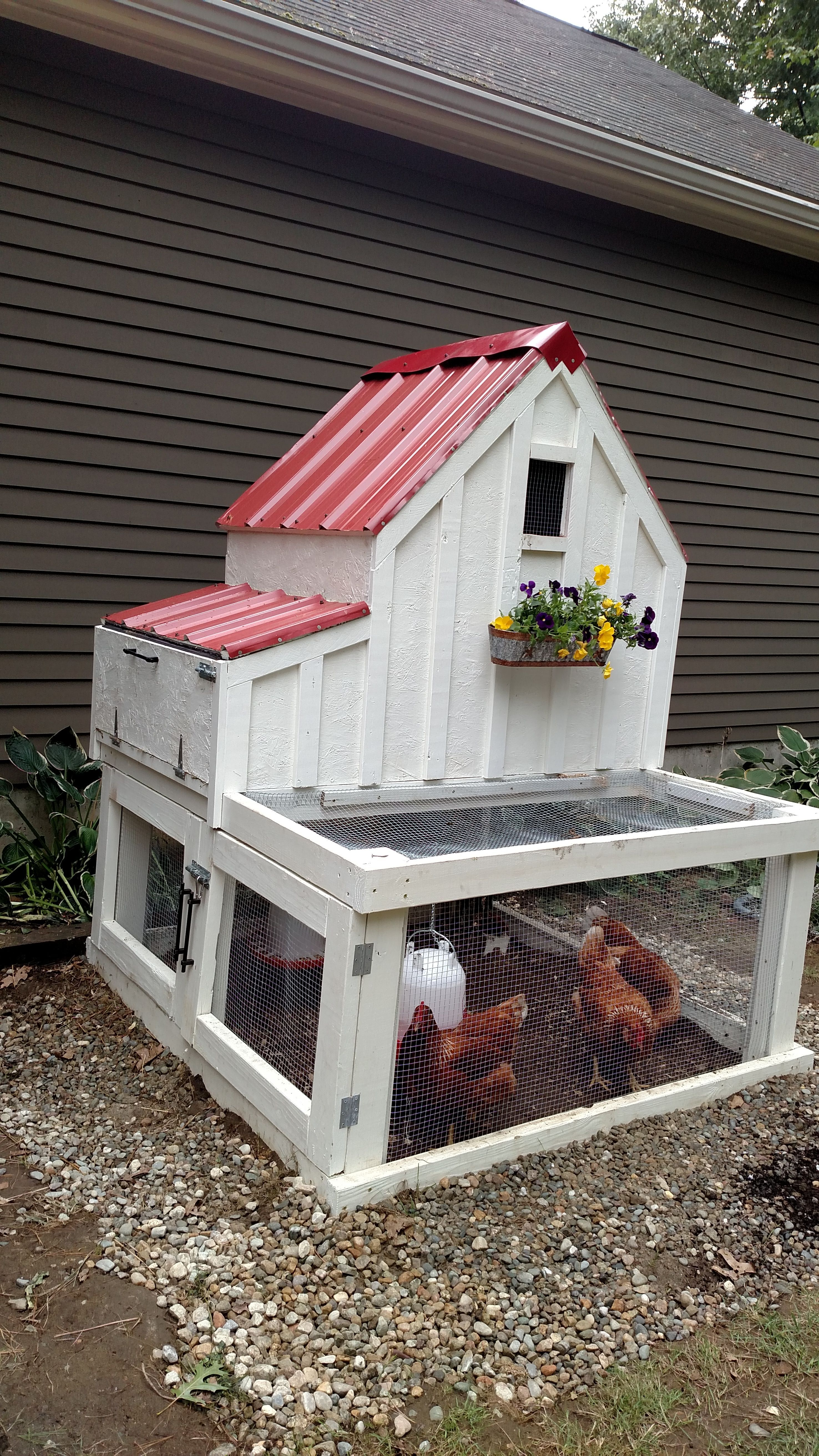 My version of the small chicken coop do it yourself home projects my version of the small chicken coop do it yourself home projects from ana white solutioingenieria Choice Image