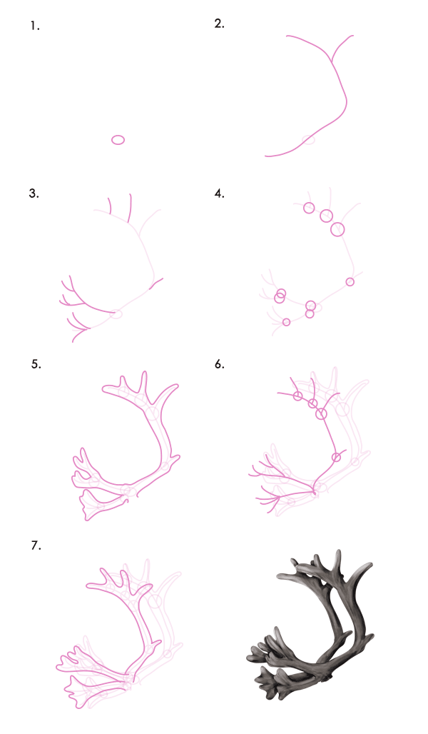 How to draw animals: deer, their relatives and their anatomy ...