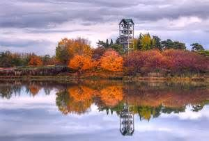 Chicago Botanic Garden In the Fall - - Yahoo Image Search Results