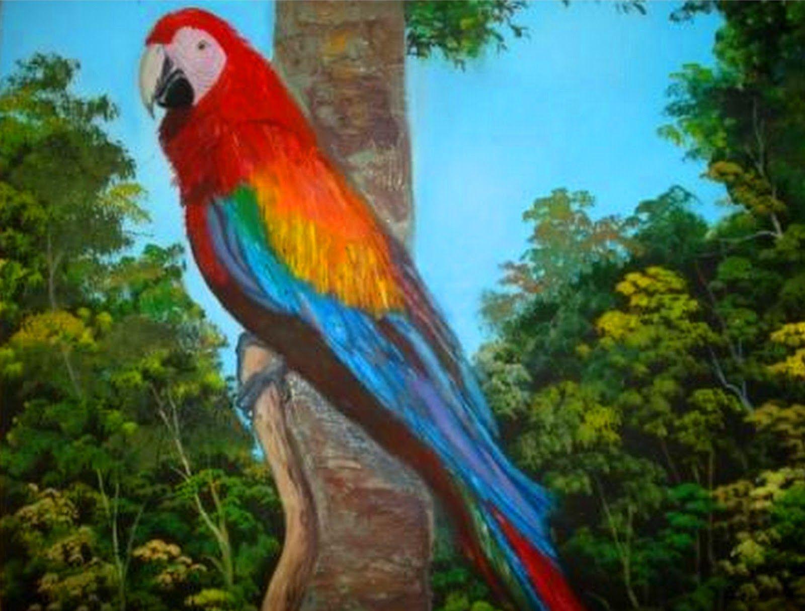 Imagenes Flores Caricatura Buscar Con Google: Imagenes Paisajes Con Aves - Buscar Con Google