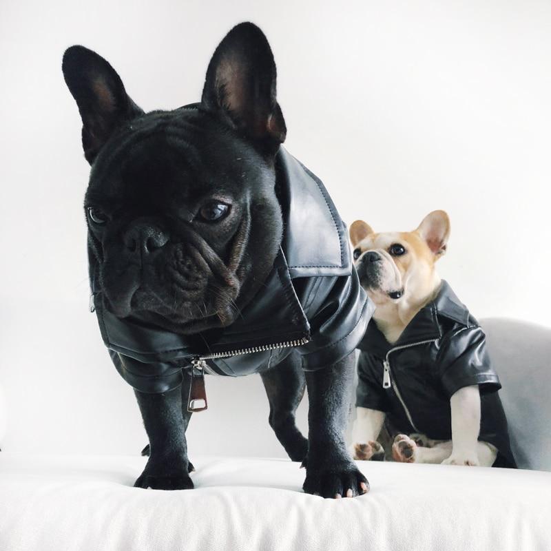 Mpk Dog Winter Wear Cool Looking Dog Jacket Flannel Soft Woven