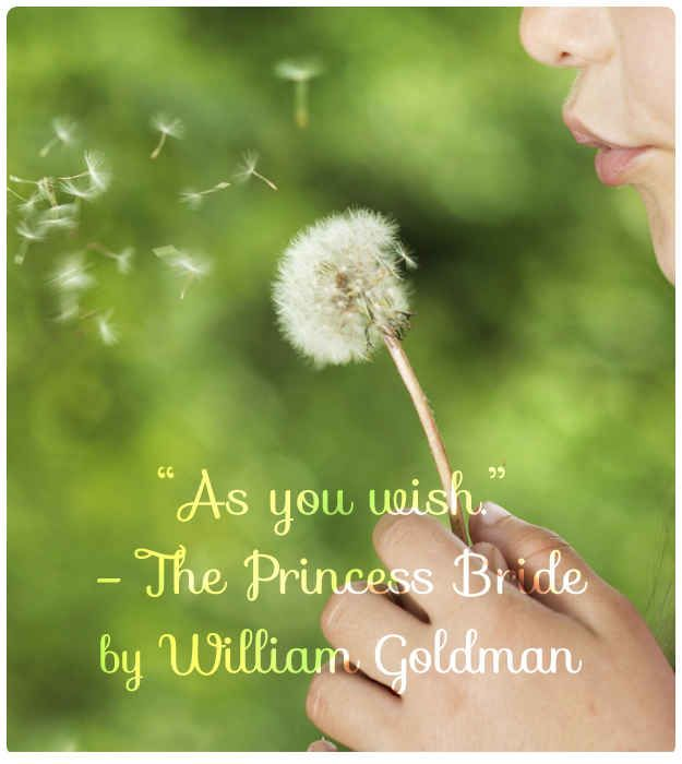 The Princess Bride By William Goldman 21 Beautiful And Unique Wedding Readings From Books