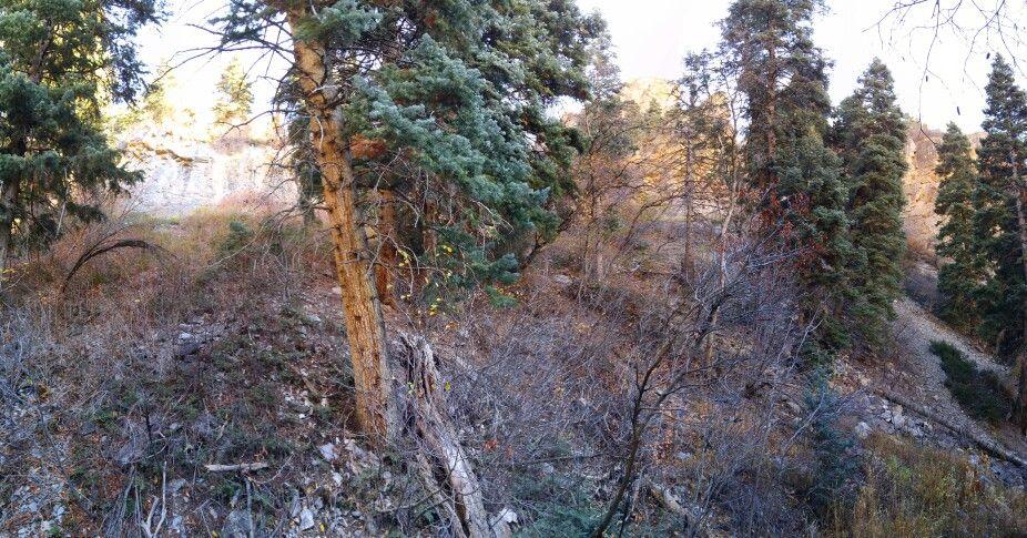 Battlecreek, Pleasant Grove Battle creek, Pleasant grove