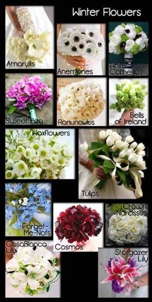 Winter Wedding Flowers | A Seasonal Guide with Photos | Save money by choosing flowers in season for your wedding. by ConnieRose