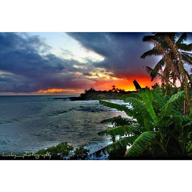 Corey Lachance Lucky Photography Instagram Photos Websta Baby Beachbungalowhawaii