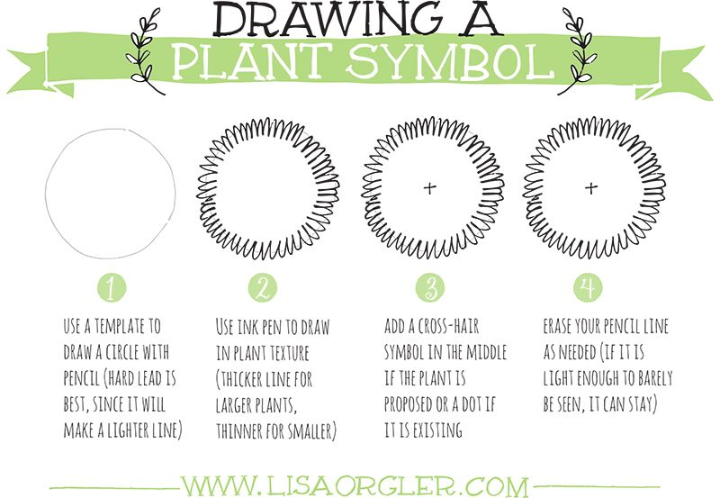 Jul 31 Drawing Plant Symbols Practice Sheet Work Hard Plants And