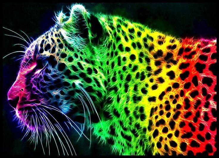 Neon Jaguar Animal Wallpaper Aoutos Hd Wallpapers