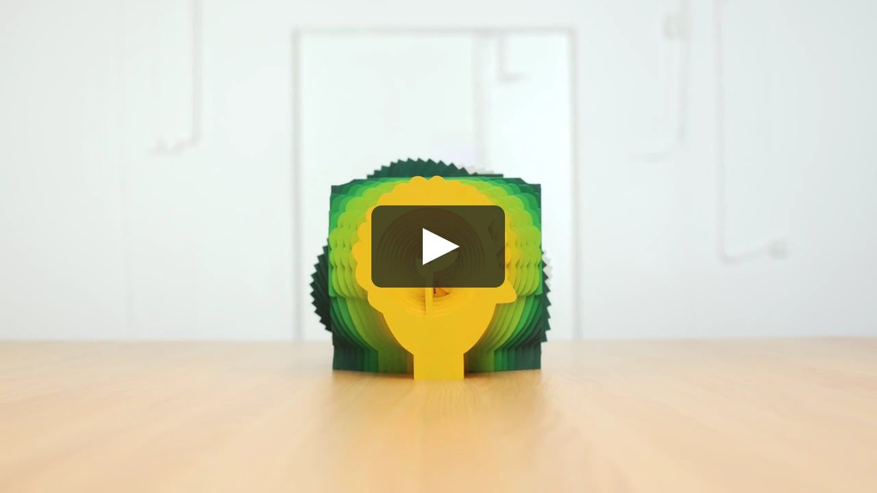 Curtin University Degree In 2020 Motion Design Stop Motion Curtin University