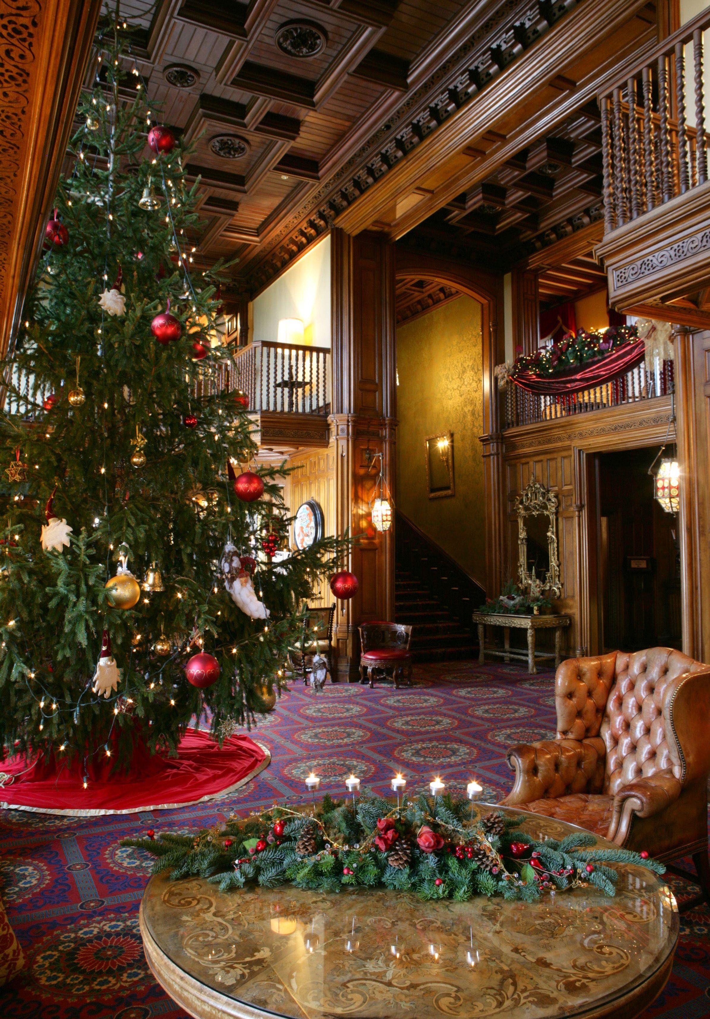 An incredible Christmas tree fills The Oak Hall at Ashford