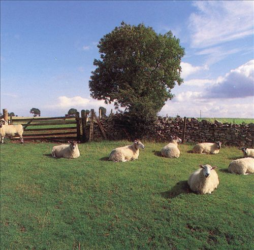 Chill Out - The KLF | Songs, Reviews, Credits, Awards | AllMusic