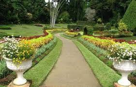 Enjoy the morning walk along the 'Peradeniya Botanical' garden at #SriLanka. Book a trip now!
