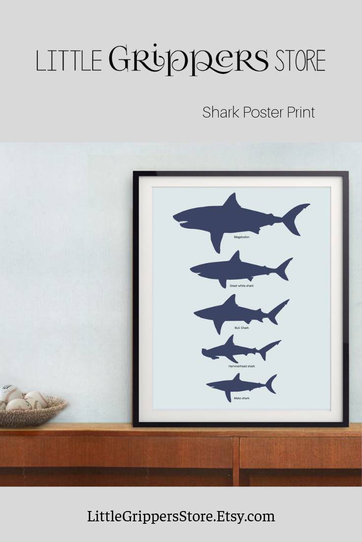 This High Resolution Printable Shark Chart Is A Quick And Easy Way To Fill The Walls Of Loving Kids Rooms File Ready Print Immediately