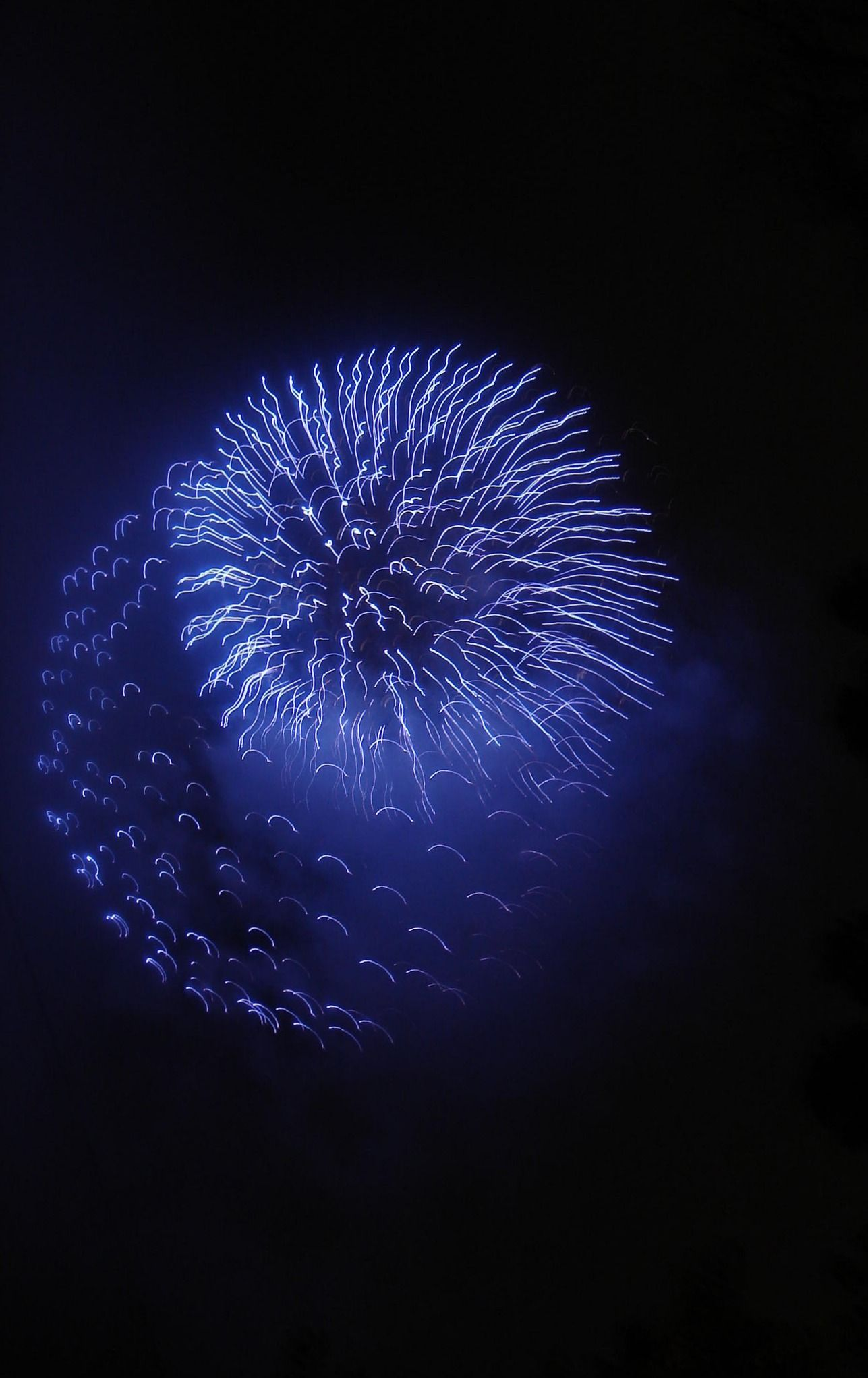 Blue Firework | Very cool photo blog