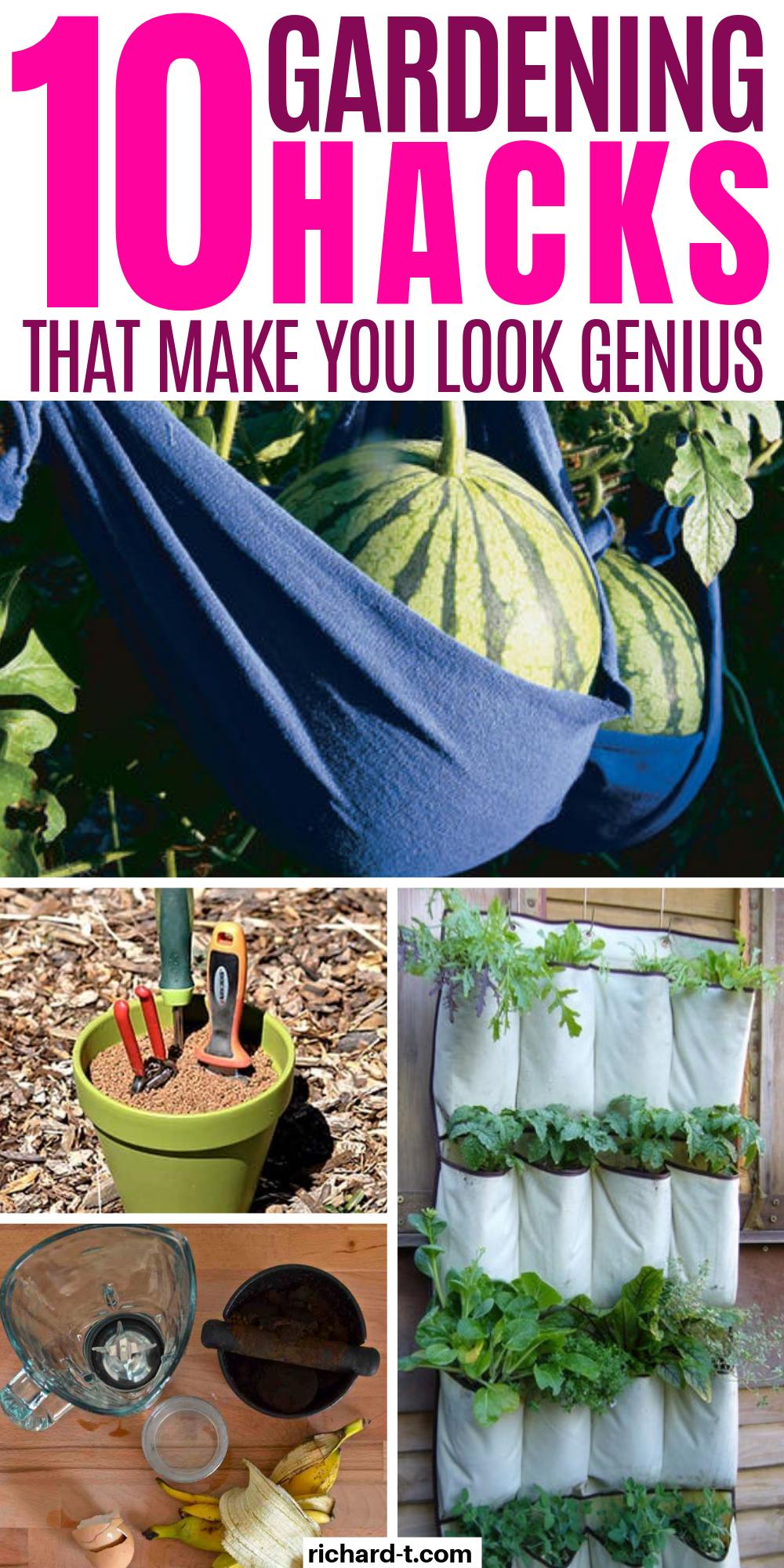 17 Clever Vegetable Garden Hacks With Images Veggie Garden
