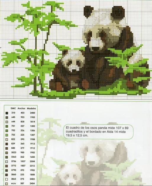 Una Panda mama con su hijito: