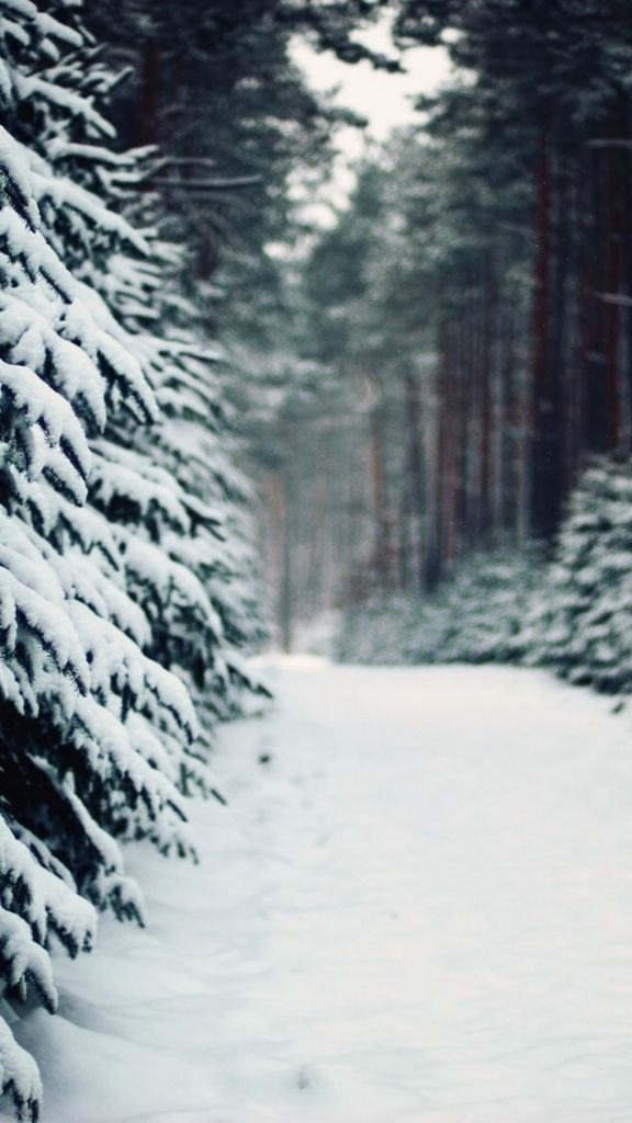 Iphone 5 Falling Snow Wallpaper ☺photography Iphone Wallpaper Tumblr Stock Images