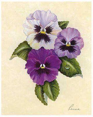 Violet Pansy Flower Art Flower Painting Pansies