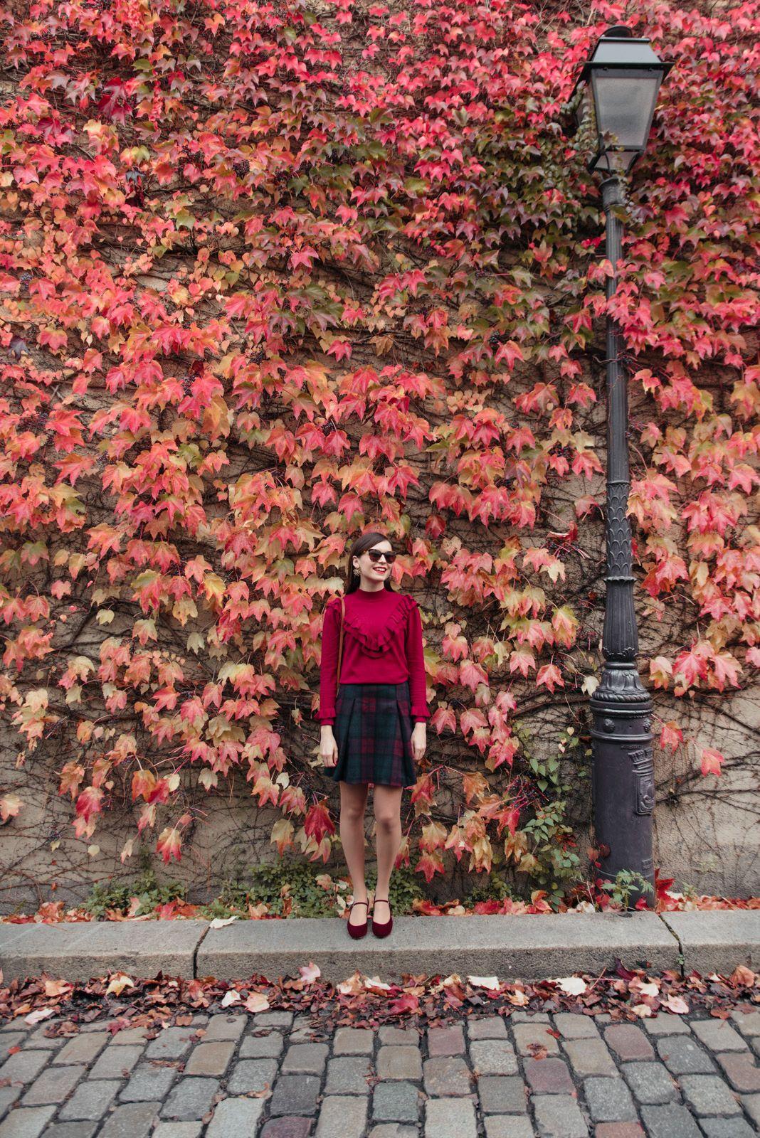Le mur de feuilles d'automne (avec images) Feuille