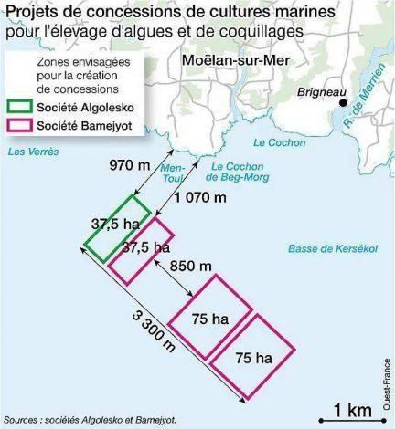 Algoculture. Le préfet dit oui à Moëlan-sur-Mer