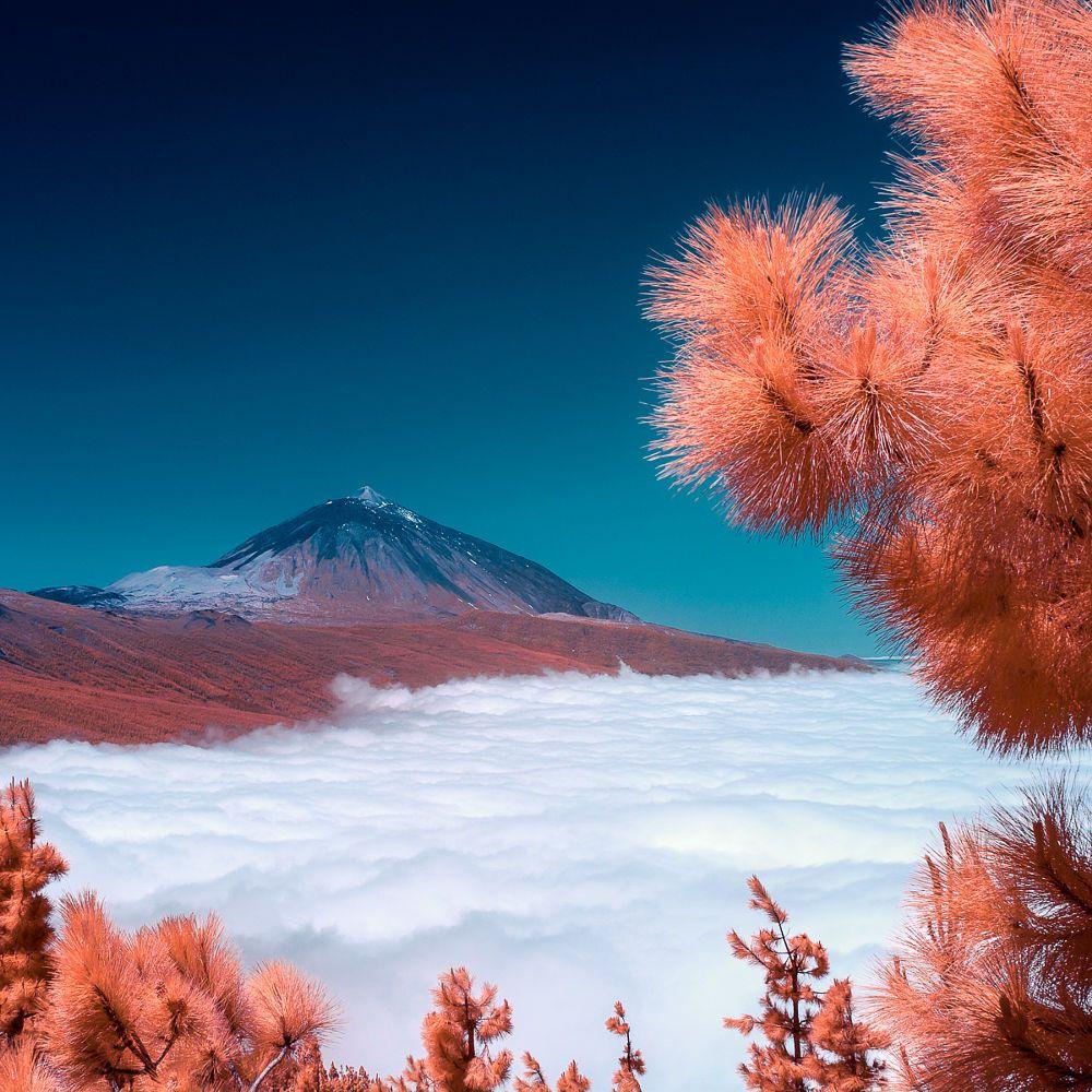 Teide By Fannie Jowski On 500px Teide Tenerife Fotos