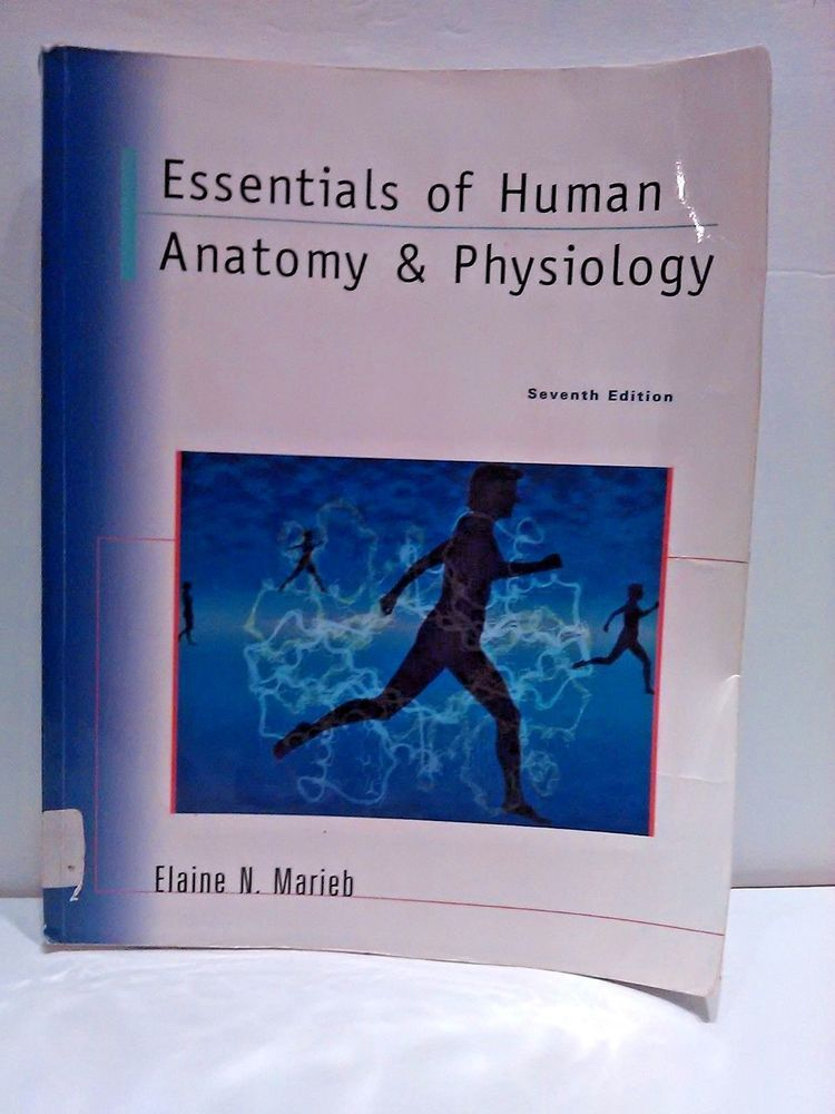 Essentials of Human Anatomy And Physiology 7th Edition Elaine Marieb ...