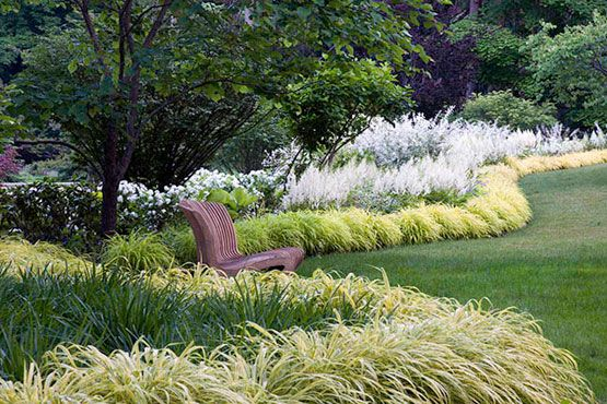 Planting design ornamental grass hedges gardens for Tall oriental grass
