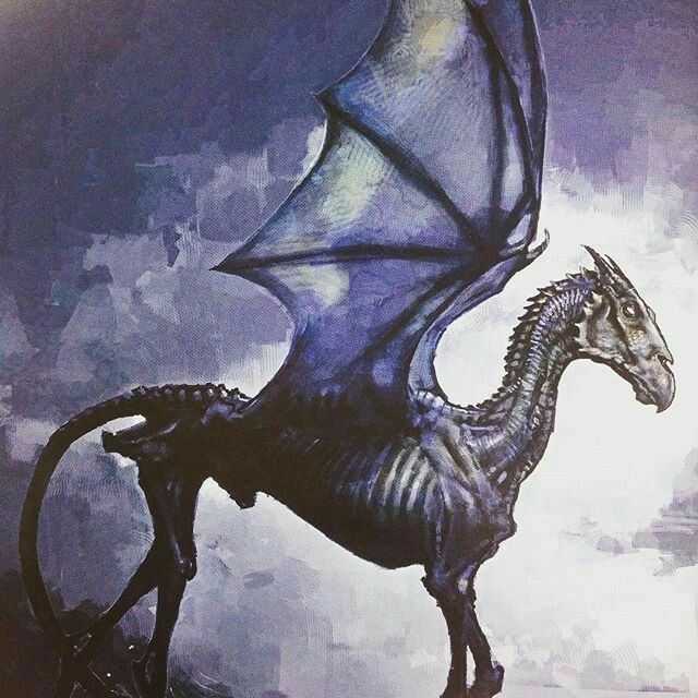 Awesome Thestral Awesome Forbiddenforest Near Awesome Hogwartscastle London England Uk Harry Potter Creatures Harry Potter Drawings Harry Potter Tattoos