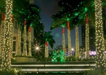 home miami christmas lights