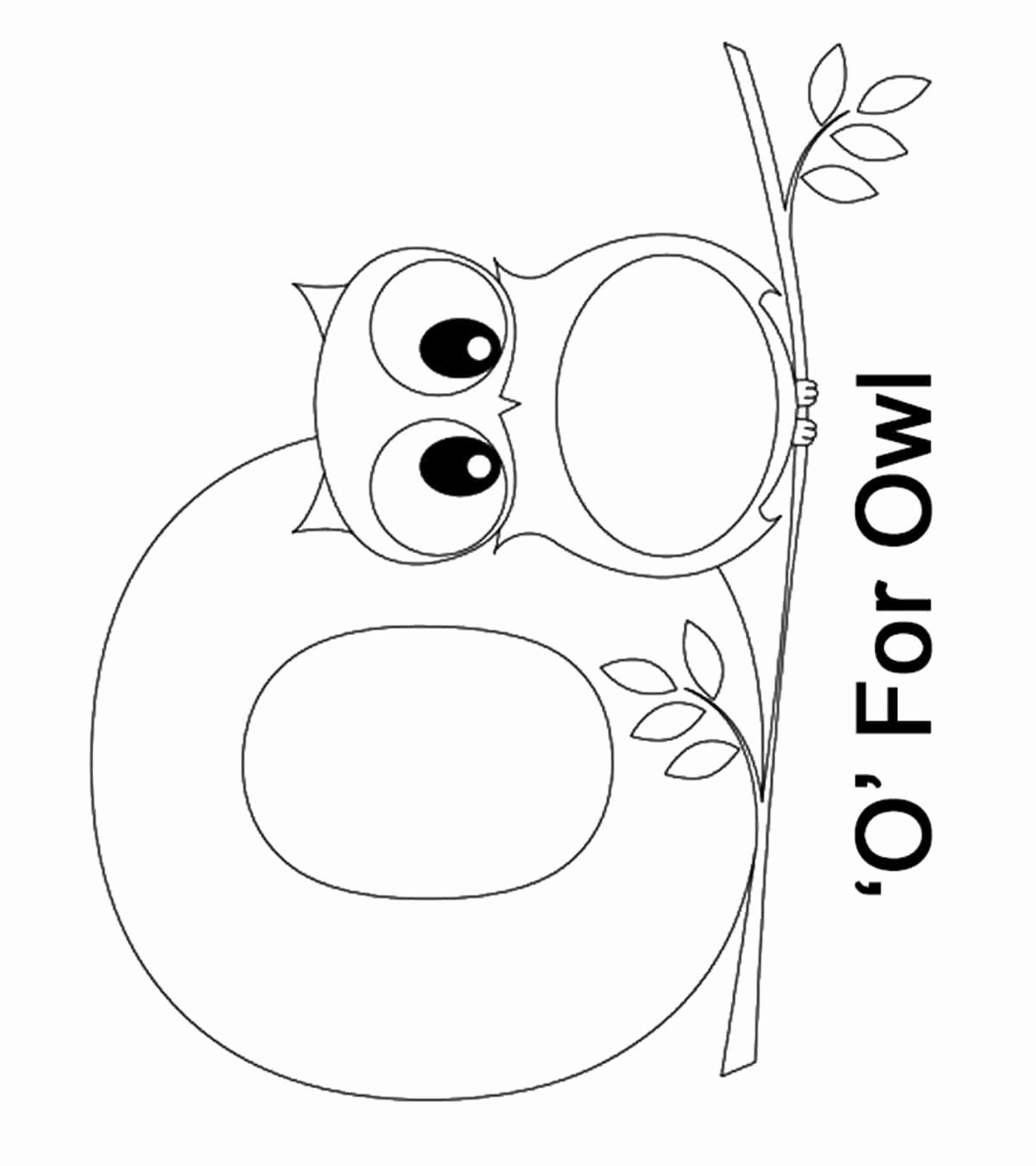 Letter O Coloring Sheets Elegant Eductional Coloring Pages