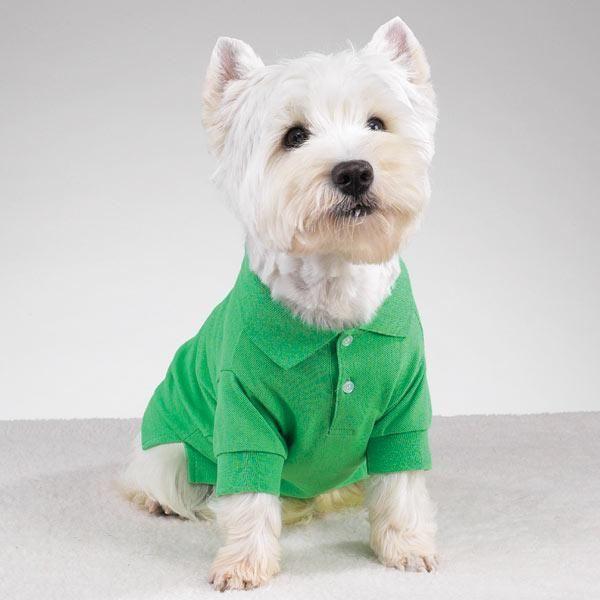 Ropa Para Perros Machos. Ropa Para Perros Machos La ropa para perros ...