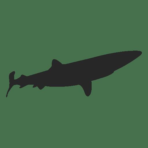 Shark Silhouette 1 Ad Affiliate Ad Silhouette Shark Shark Silhouette Silhouette Shark
