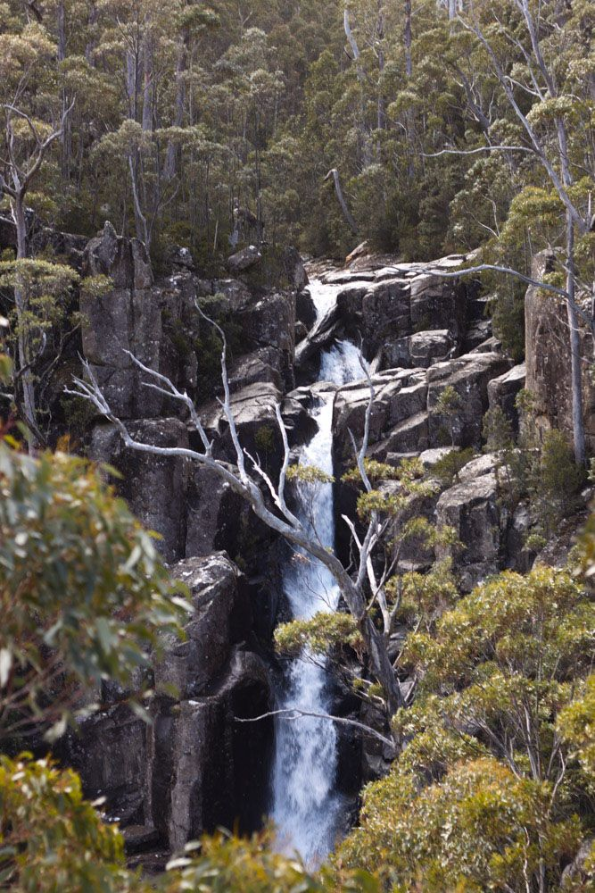 Tasmanian Bushwalking Guide. Wellington Falls, Wellington Park | Walk Grade: Medium | Time: 5 Hours | Distance: 16km | Parks Pass Not Needed