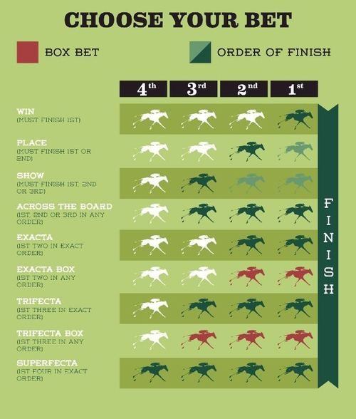 Exacta betting charts dog racing betting rules