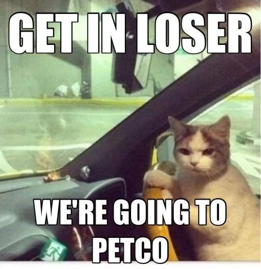d8209e617429c7ed4b9bc3a8dfedda3a get in loser we are going to petco www memefunnies com
