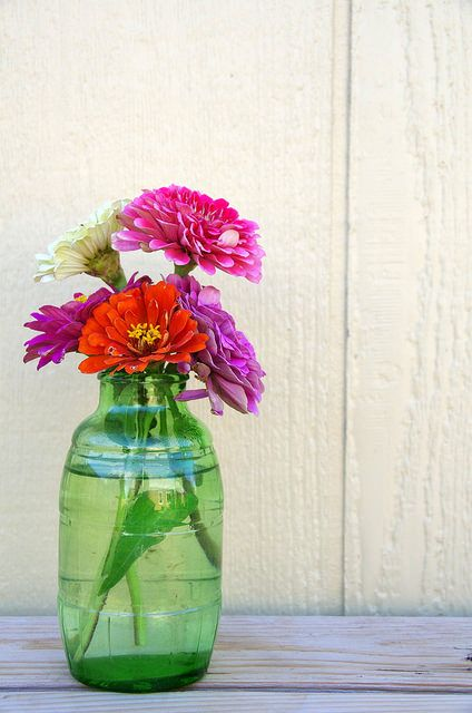 Zinnias in a Mickey's Fine Malt Liquor bottle that I found in Lake Meredith.