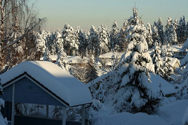 Winter in Gjerdrum, Norway, where my dad's family is from
