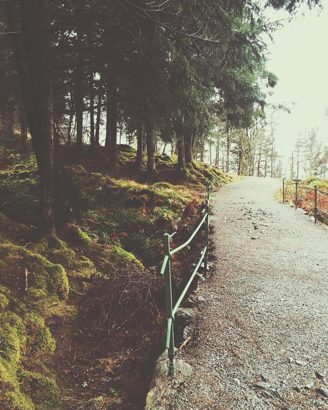 walking keeps my worries away by peculiarmee